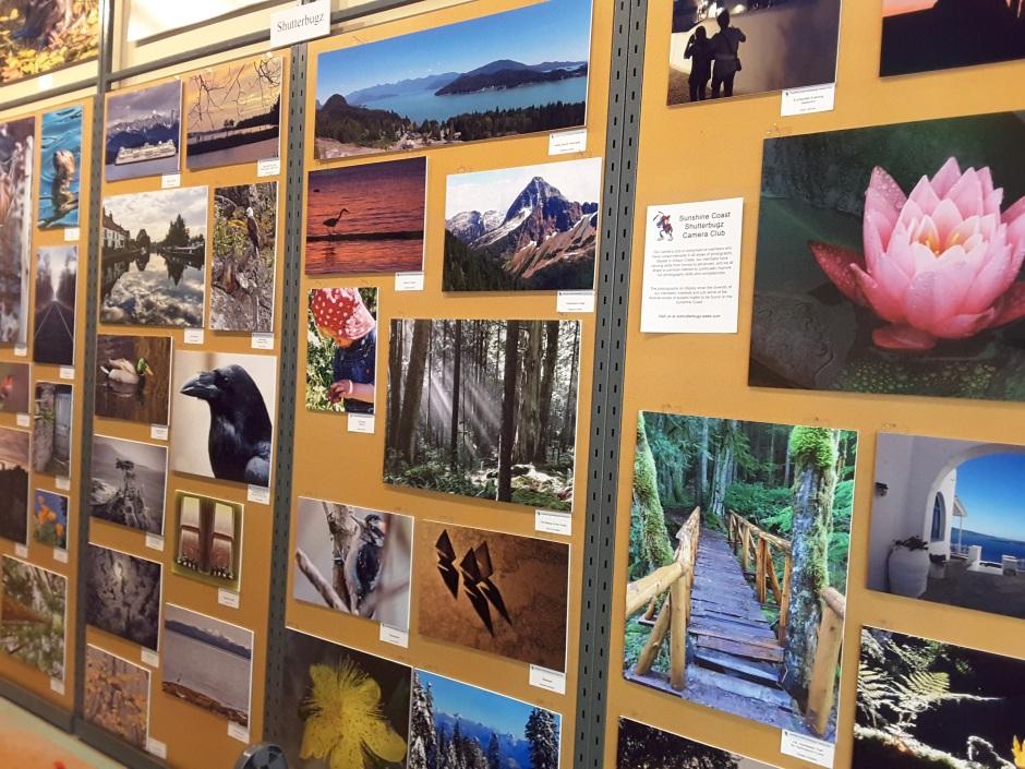 Shutterbugz Wall at Celebrate Local Photographers